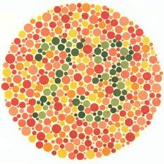 Farbenblindheit 73